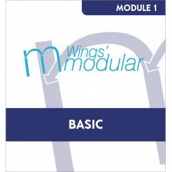 Module Basic