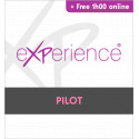 Wings' eXPerience Pilot + First handling 1h00